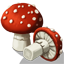 AmanitaMushrooms Icon.png