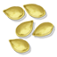 PumpkinSeed Icon.png