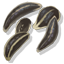 SaxifrageSeed Icon.png