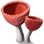 CookeinaMushrooms Icon.png