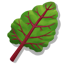 BeetGreens Icon.png
