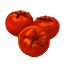 FriedTomatoes Icon.png