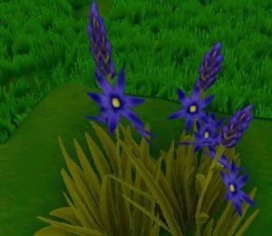 Camas Plant.jpg