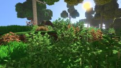 Salal Plant.jpg