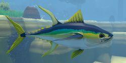 Tuna Animal.jpg