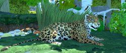 Jaguar Animal.jpg
