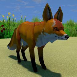 Fox Animal.jpg