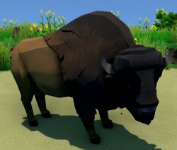 Bison Animal.jpg